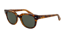 Ray-Ban Sunglasses METEOR RB4168 - 710