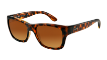 Ray-Ban Sunglasses RB4194 - 710/85
